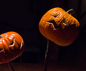 All Hallows Eve pumpkins